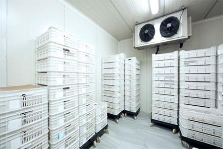 Tiêu chuẩn về kho lạnh bảo quản thủy sản
