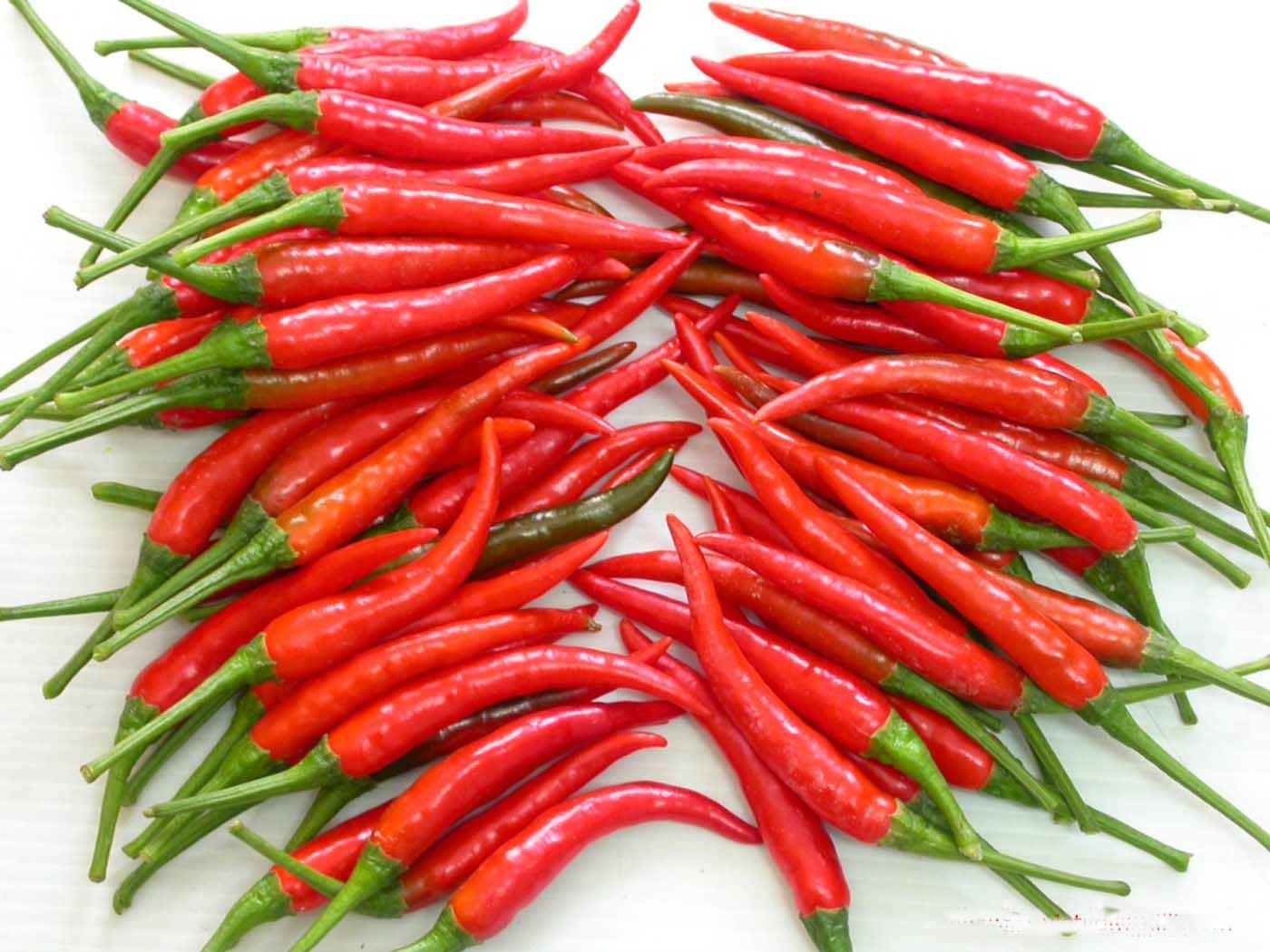 bảo quản ớt tươi trong tủ lạnh rất được lâu